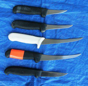 I experimented with various boning knife blade lengths. The winner in this category is the five-inch. (Pantenburg photos)