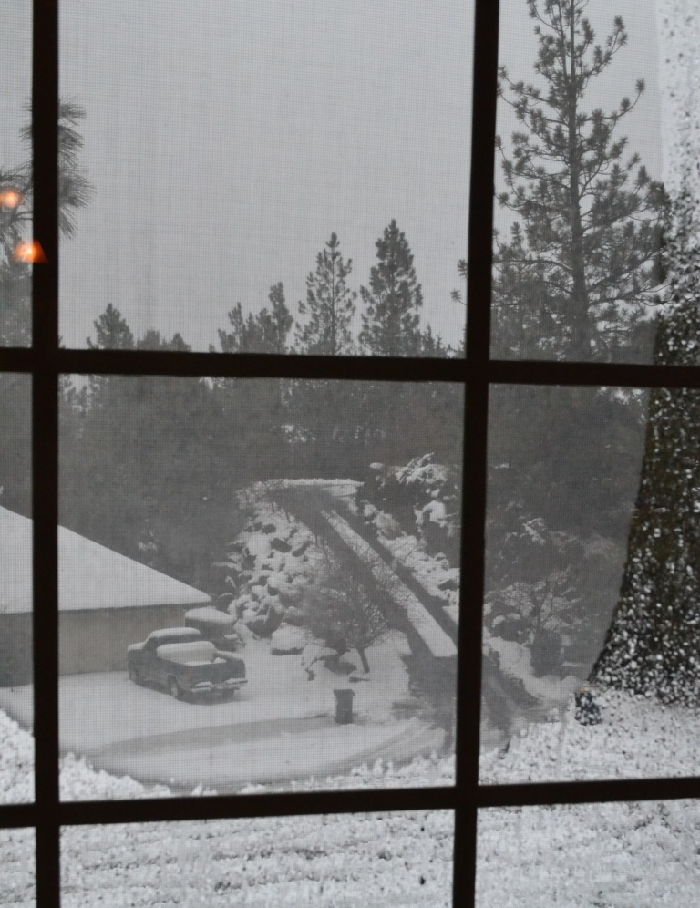 Emergency tips for handling the cold outdoor quest for Windows for cold climates