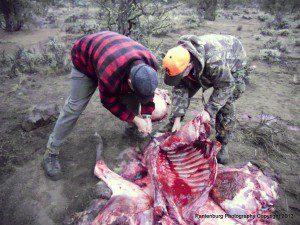 1-10 31 elk hunt 023