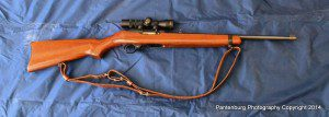 My Ruger 10/22 is light, accurate, and absolutely reliable.