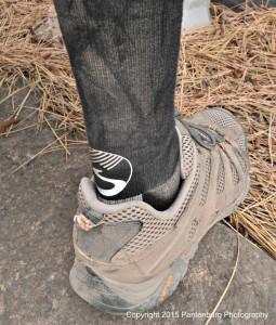 torch sock 2