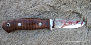 The four-inch blade on this Bark River Snowy River worked very well on this elk.
