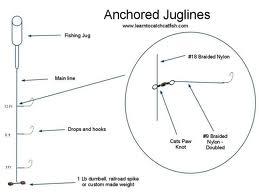 Juglines Illustration Survival Common Sense Blog