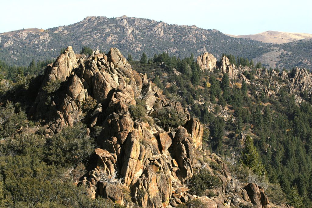 mountain scenery, hunting