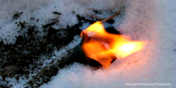 make recycled fire starter, make firestarter, best survival firestarter