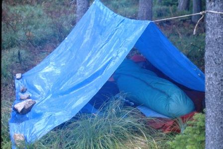 a frame, tarp shelter. tarps, tarp shelter