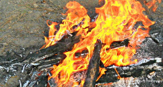build a fire, survival fire making, best fire making tools