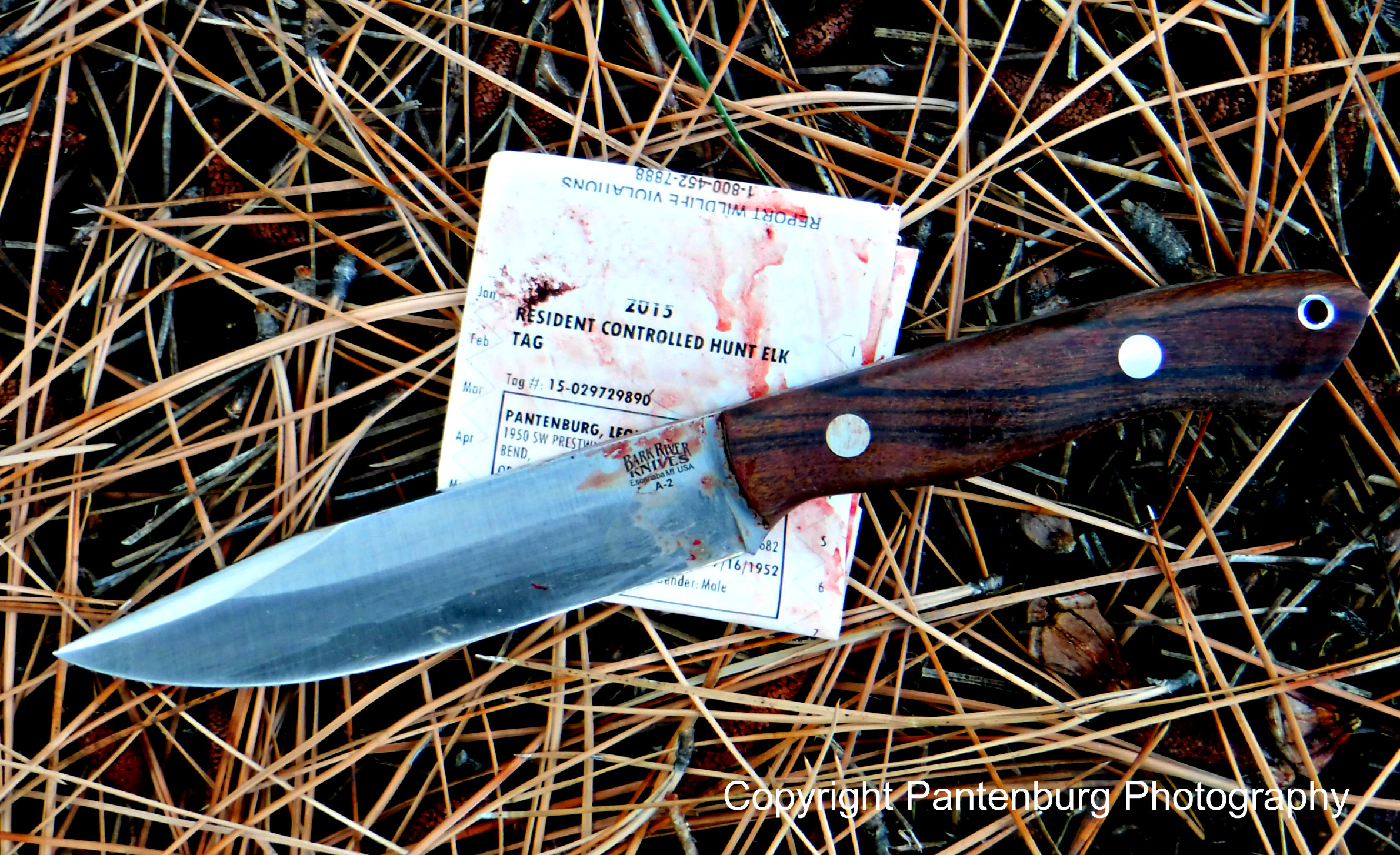This Bark River Sahara worked really well as a hunting knife.