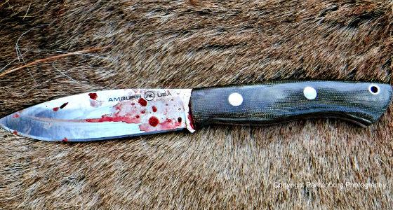 Bark River Knives, best survival knife, best hunting knife
