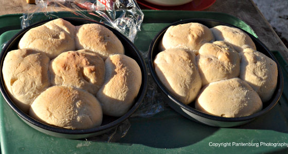 baked sourdough rolls, Dutch oven cooking