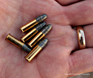 .22 long rifle, best .22 rifle, survival rifle