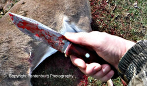 Bravo 1.25 LT, Bark River Knives, best deer hunting knife, best survival knife