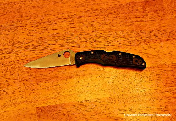 Spyderco Enduro, lock blade folders, tactical knives