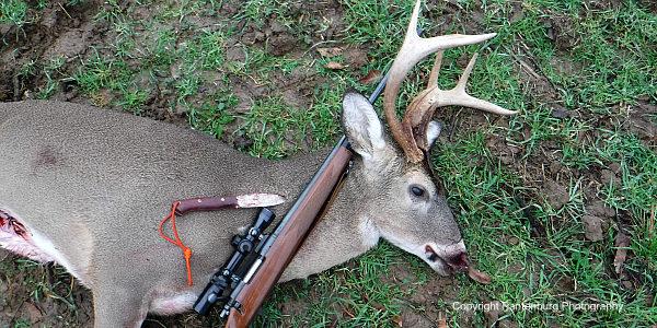 ten-top-deer-hunter-knives