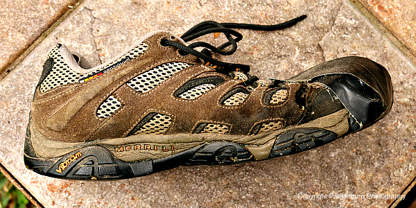 Merrell Moab Vent 2, Merrell shoes, best walking shoe, best hiking shoe