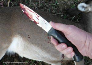 big d knives, deer hunting